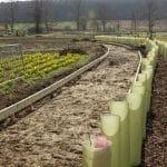 20190328 - Swale Park planting